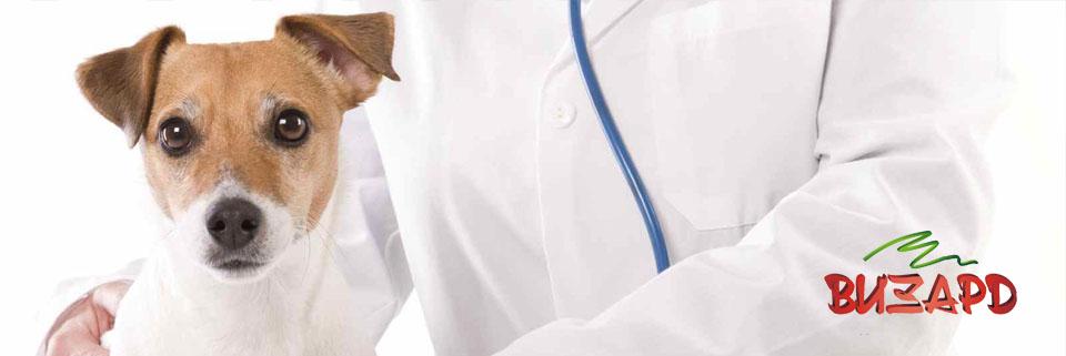 Лицензия ветеринара
